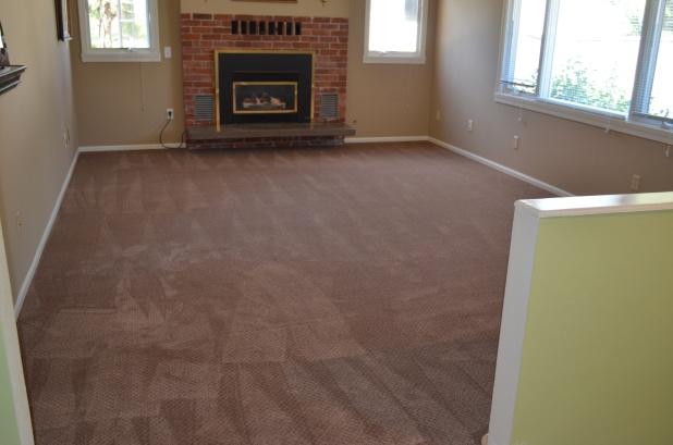 carpet 010