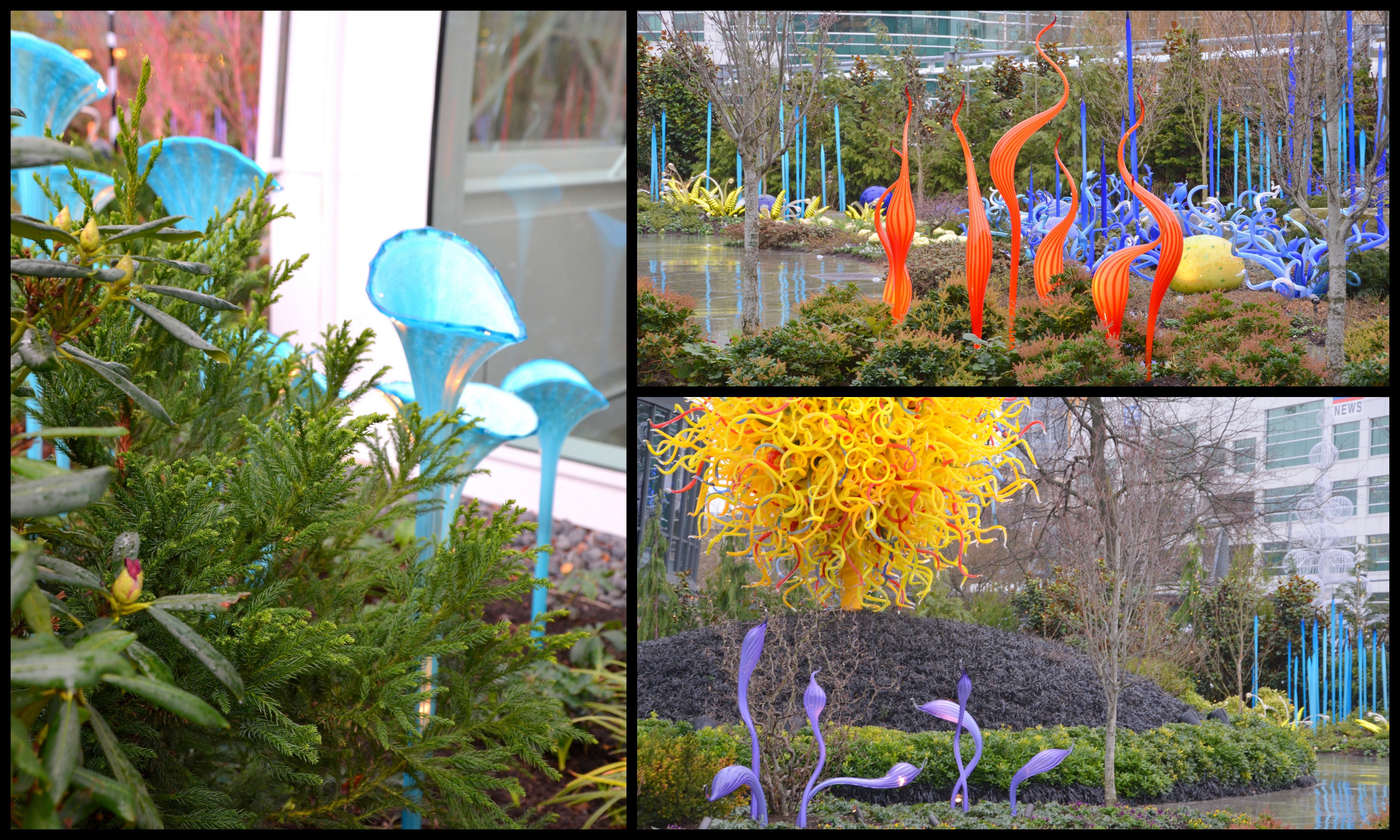 Chihuly Garden And Glass The Happy Wonderer Ellen B