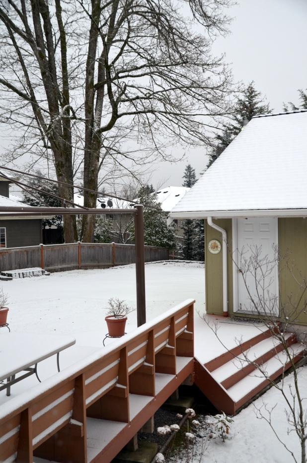 Vancouver & Snow 065