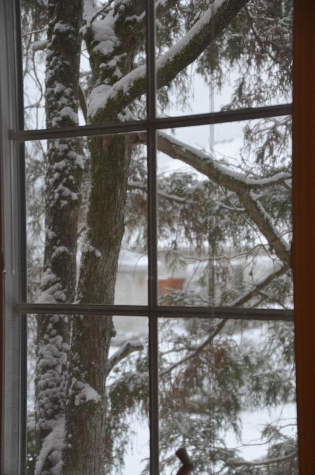 Vancouver & Snow 067