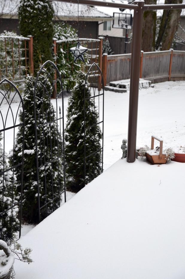 Vancouver & Snow 071