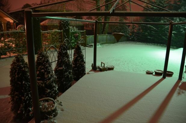 Feb Snow 030