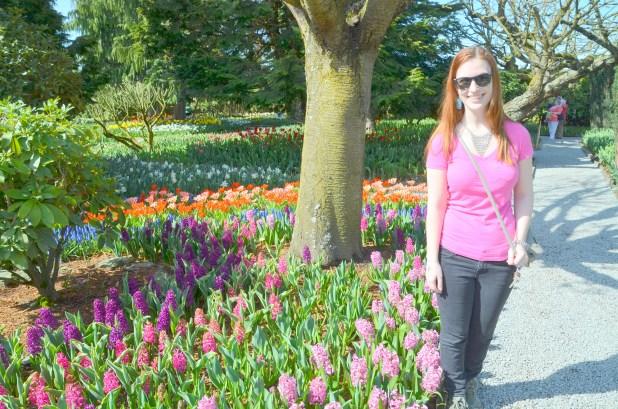 Tulips 050