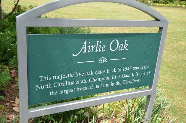 Airlie Gardens 026