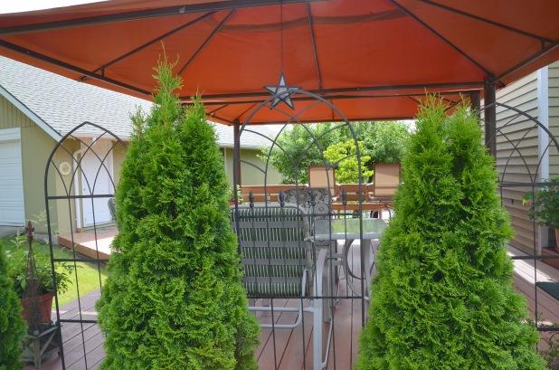 tri tip patio 037