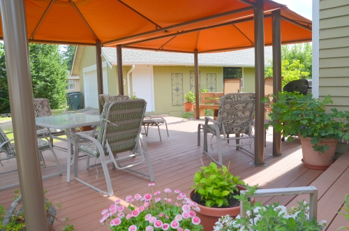 tri tip patio 038