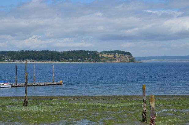 Whidbey Island 043