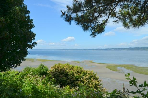 Whidbey Island 049