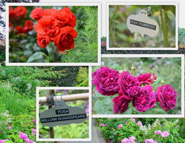 2014-07-07 Day 4 Gardens1