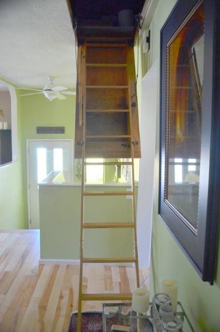 yard&attic 010