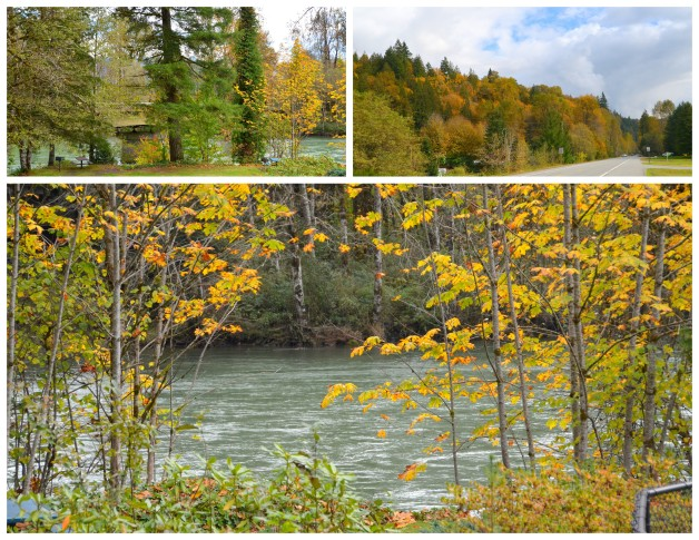 2016-10-10-fall-drive1