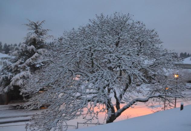 decor-snow-025