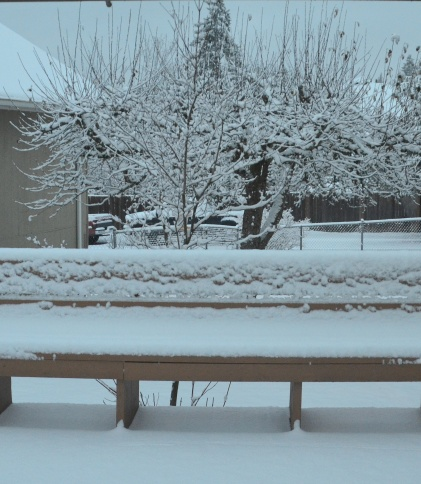 decor-snow-032