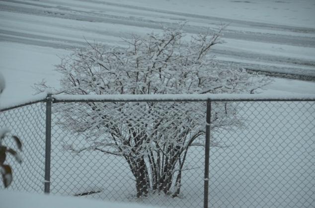 decor-snow-044
