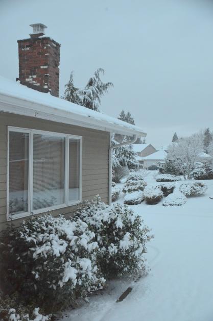 decor-snow-049
