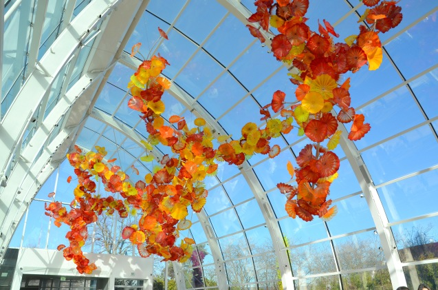 chihuly-041
