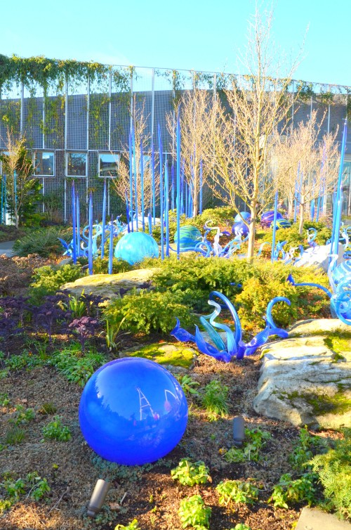 chihuly-049