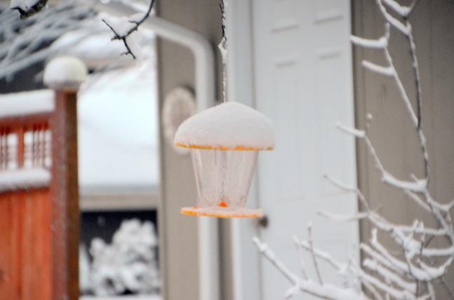 feb-6-snow17-012