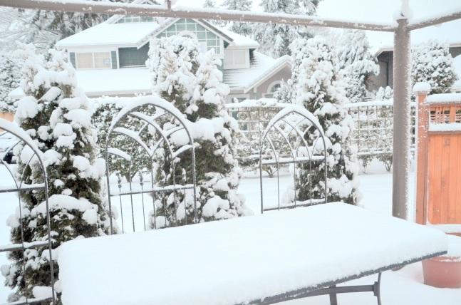 feb-6-snow17-018