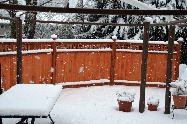 more-snow-001