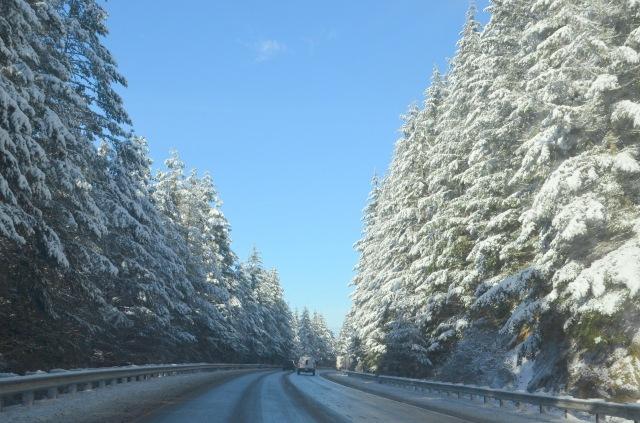 more-snow-023