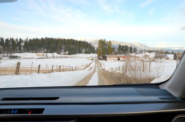 drive-home-002